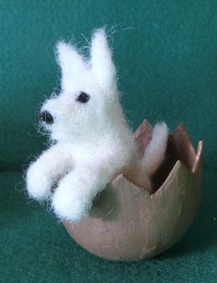 kleiner weißer Hund in Ei