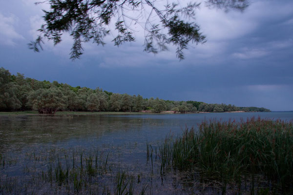Avant l'orage...(Parc naturel régional de la forêt d'orient).