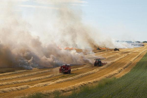 Incendie dans un champ d'escourgeon. ( Dierrey-saint-Julien).