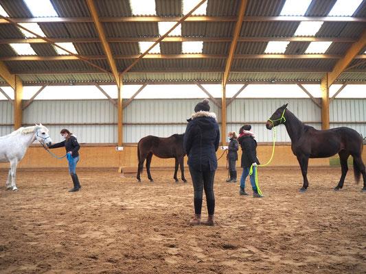 Renouer avec les émotions positives grâce au cheval
