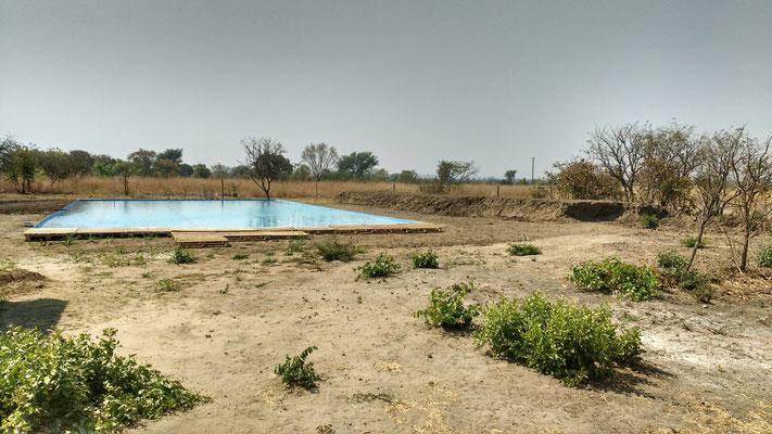 "Das Schwimmbecken an der ""Acacia International School"""
