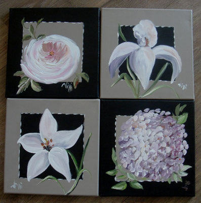 Blanches 1  4x30x30