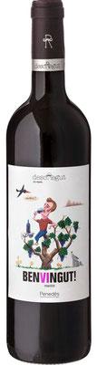 red wine benvingut! merlot organci penedes