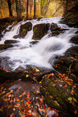 Selke Wasserfall im Harz im Herbst