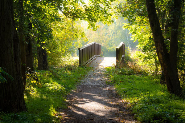 Brücke in der Dölauer Heide an einem Morgen im Herbst