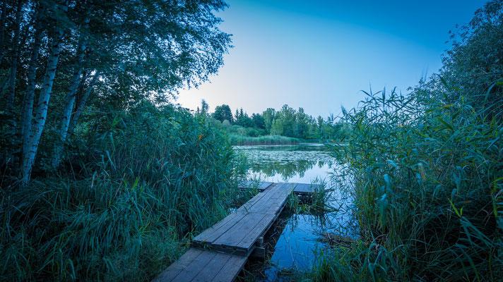 Steg am Heidesee an einem Morgen im Sommer