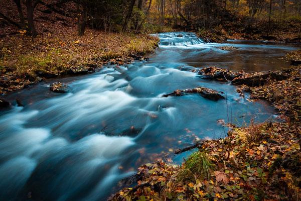 Die Selke im Herbst