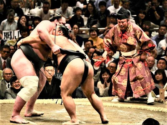 Tokio Reisetipps Sumo Ringen
