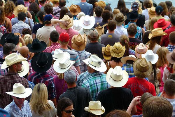 Calgary Reise Tipps Aktivitäten
