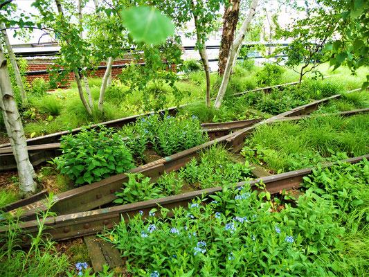 Schöne Parks in New York City High Line Park