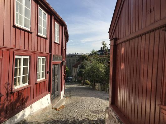 Oslo Reisebericht Telthusbakken