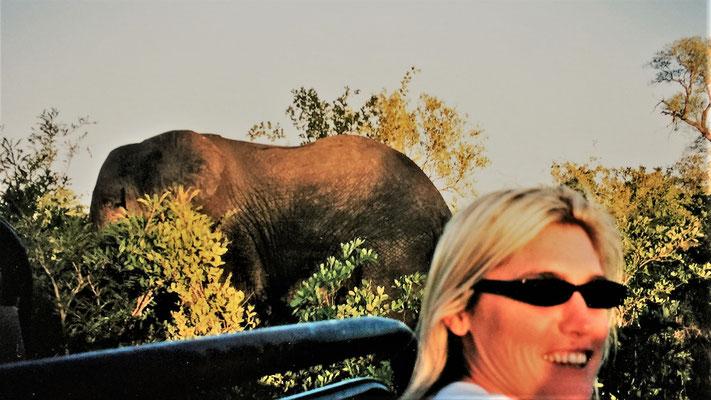 Südafrika Reisetipps Tagesablauf Safari Lodge