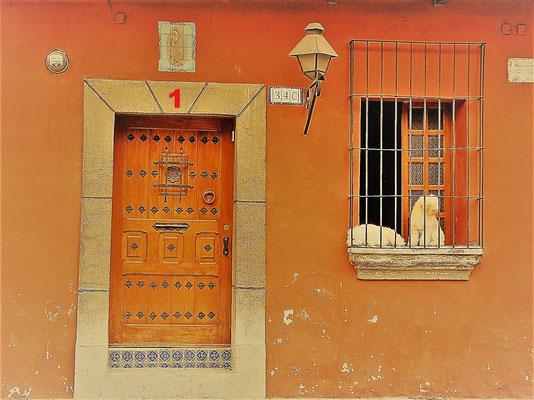 Beim Bummeln durch Antigua in Guatemala fanden Susanne und ich diese schön verzierte Holztüre - bewacht von den beiden bellenden Pudeln, die in diesem Haus wohnen.