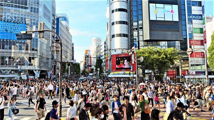 Tokio Reisetipps