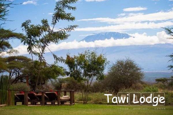 Kenia Lodges Luxus - Tawi Lodge