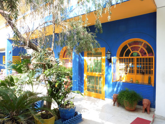 Taj Mahal Hotels Tipps Coral House Homestay