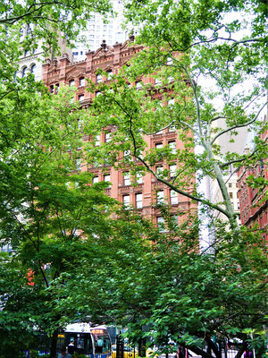 New York Reisebericht: Potter Building