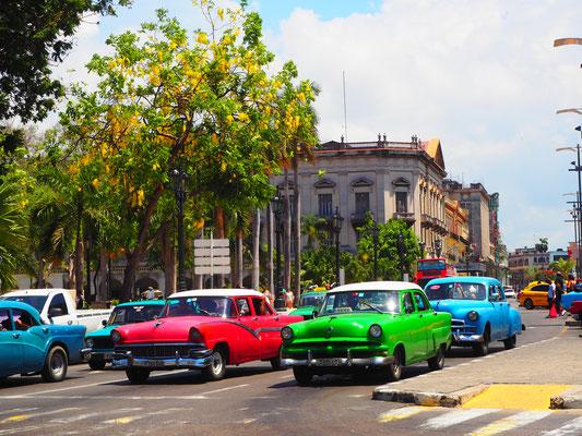Kuba Reisebericht 2017 Havanna Oldtimer fahren