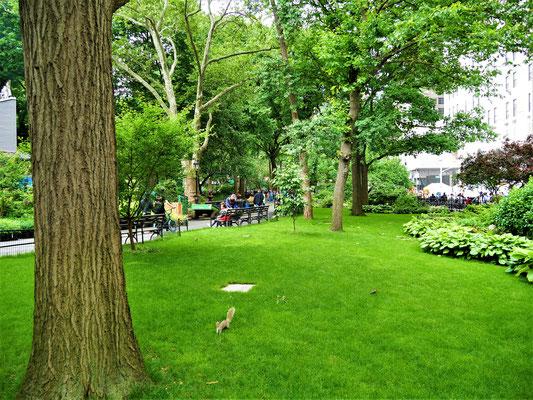 New York Plätze  Madison Square Park