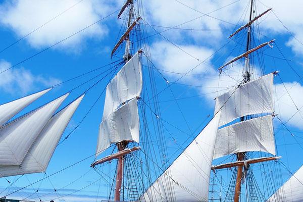 San Diego Reisetipps Star of india