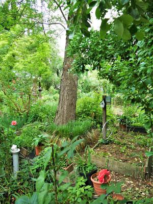 Schöne Parks in New York City Community Gardens