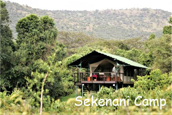 Kenia Lodge Safari Sekenani Camp