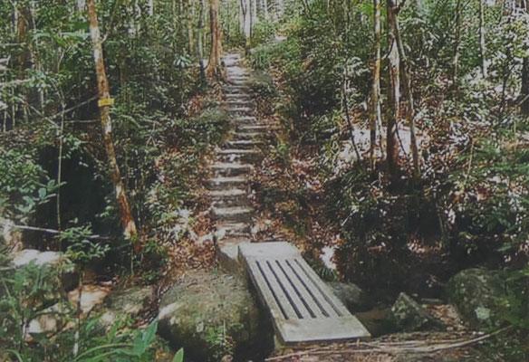 Penang Sehenswürdigkeiten Nationalpark