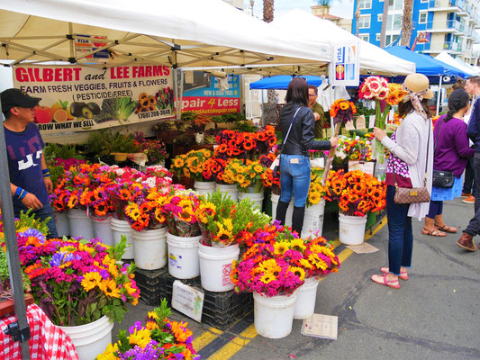 San Diego Reise Blog  Straßenmärkte