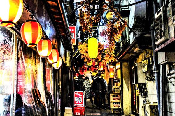 Tokio Sehenswürdigkeiten Memory Lane