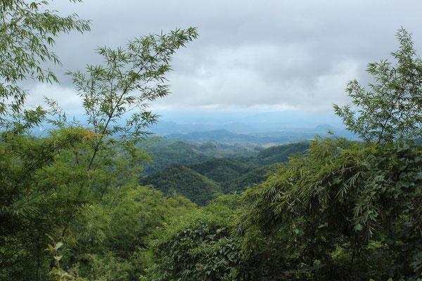 Chiang Rai Thailand Trekking