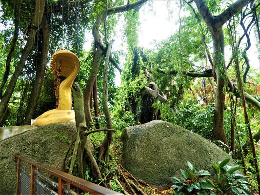 Penang Reiseblog Avatar Secret Garden