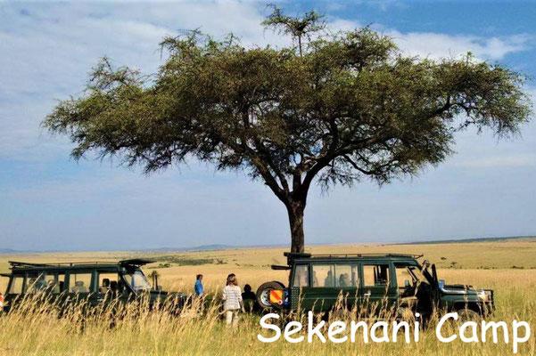 Kenia Luxus Lodges Sekenani Camp