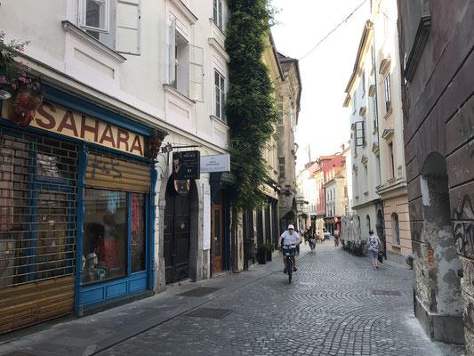 Ljubljana Reiseblog Robba Brunnen