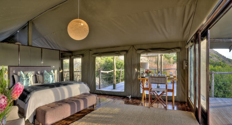 Südafrika Safari Lodges Amakhala Game Reserve