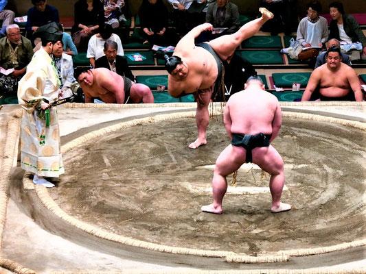 Tokio Reiseblog Sumo Ringen