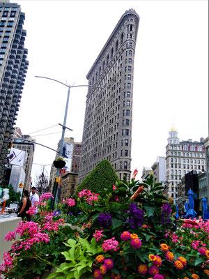 New York Bügeleisenhaus mit Blumen