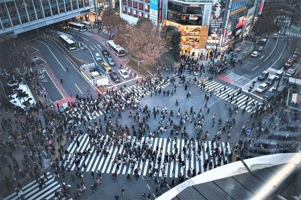 Tokio Urlaub Tipps