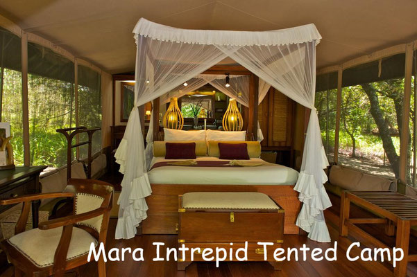 Kenia Nationalparks Lodges Mara Intrepid Tented Camp