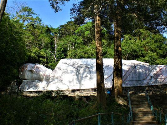 Reiseführer Mui Ne Vietnam Phan Thiet Aktivitäten
