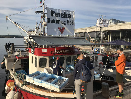 Oslo Tipps Aker Brygge und Hafen