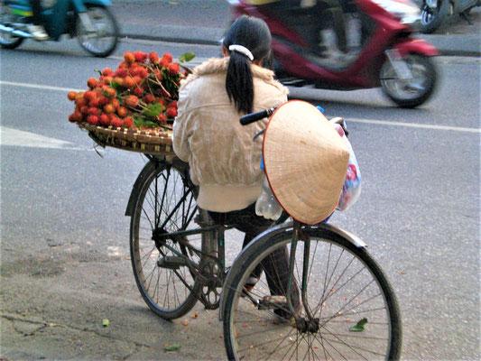 Trinkgeld Vietnam 2020