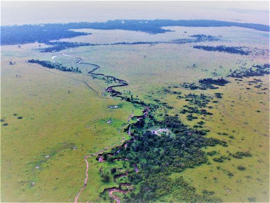 Kenia Masai Mara Safari Erfahrungen: Die Savanne von oben