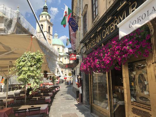 Ljubljana Sehenswürdigkeiten St. Nikolaus Kathedrale