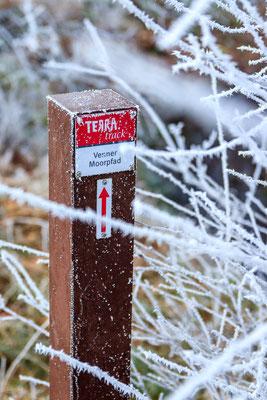 TERRA.track Venner Moorpfad