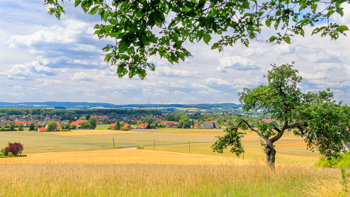 Auf dem TERRA.track Oldendorfer Aussichten