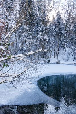Grüner See in Melle-Markendorf - Winter 2021