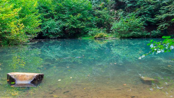 Grüner See in Melle-Markendorf