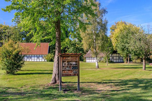 Sommer im Grönenbergpark