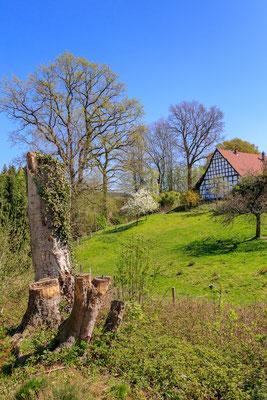 Kirschwanderweg Hagen a. TW.
