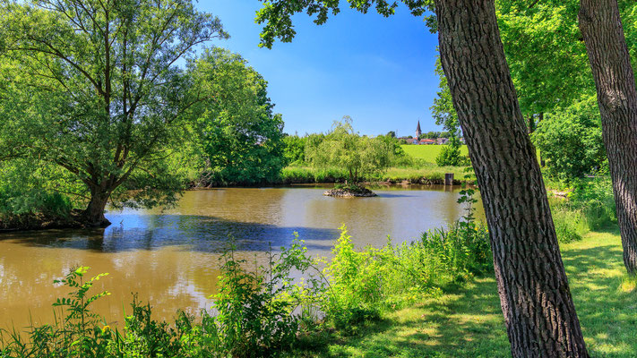 Teich am Schloss Königsbrück